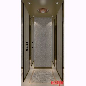Vvvf Passenger Small Home Elevator with Price pictures & photos