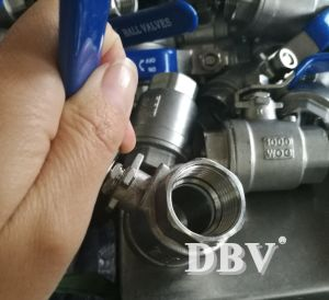 Stainless Steel Bsp/BSPT/BSPP/NPT Threaded Valves pictures & photos