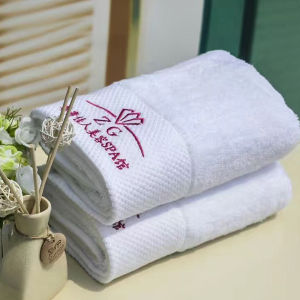Shanghai DPF Textile Bath Towel for Hotel pictures & photos