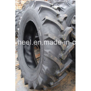 Agriculture Tire (12.4-24 12.4-28) for Tractor pictures & photos