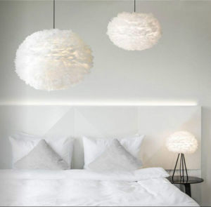 White Iron and Feather Pendant Light for Decoration pictures & photos