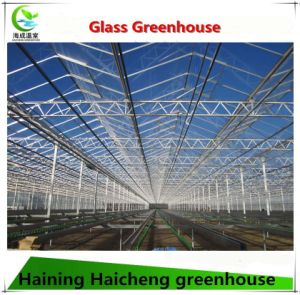 Agricultural Green House with Hydroponic Growing System pictures & photos