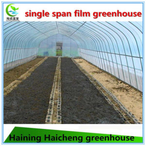 Plastic Film Greenhouse for Mushroom pictures & photos