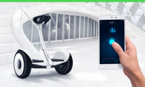 Ninebot Electric Personal Transporter with 700W Motor pictures & photos