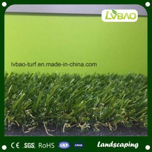 Landscape Four Color Hiqh Quality Artificial Grass pictures & photos