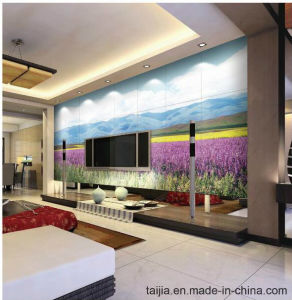 Inkjet Printing 3D Flooring Sea World Tile pictures & photos