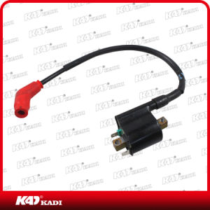 Motorcycle Parts Ignition Coil for Eco100 pictures & photos