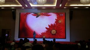 HD P4, P7.62, P10.4, P12.5, SMD Full Color Rental LED Display Screen / Indoor LED Video Display / P4 LED Video Wall pictures & photos