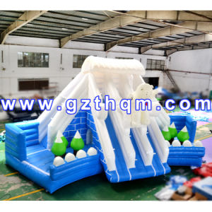 Good Quality Giant Inflatable Water Slide for Adult/Inflatable Water Slides for Home Use pictures & photos