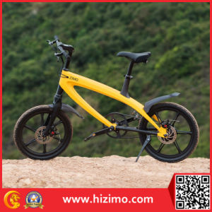 2017 Hot Sale 240W Electric Bike China Pedelec pictures & photos