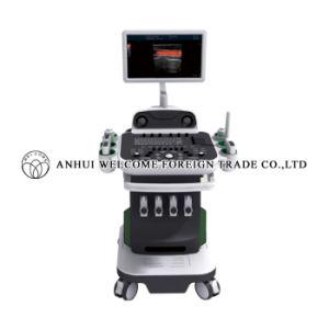 2D/3D/4D Color Doppler Ultrasonic Diagnostic System pictures & photos