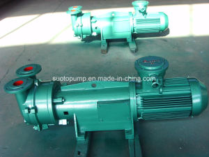 2BV6 110 Liquid Ring Vacuum Pump pictures & photos