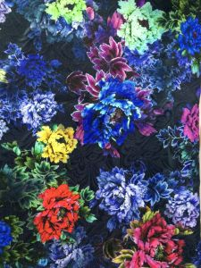 Digital Print on Mesh Lace Swimming Fabric pictures & photos