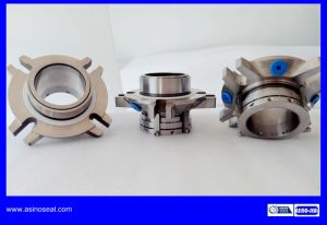 Double Cartridge Mechanical Seal as-Rcdpn Replacement of AES Cdpn pictures & photos