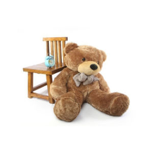 Plush Supersoft Teddy Bear Toy pictures & photos