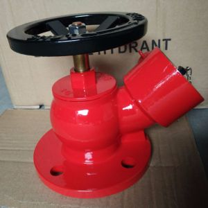 "2.5"" BS Screwed Fire Hydrant Landing Valve pictures & photos"