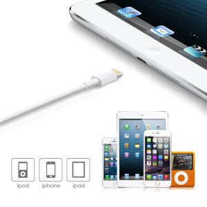 USB Type C Plug to Lighting Cable pictures & photos