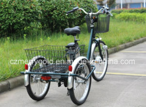 36V 250W Big Wheel Electric Tricycle Trike for Sale pictures & photos
