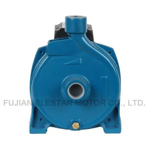 Cpm158 Electric Centrifugal Fuel Pump pictures & photos