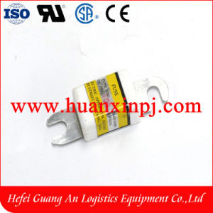100A Forklift Fuse pictures & photos