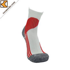 Quarter Coolmax Cotton Running Socks (162003SK) pictures & photos