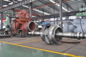 Hsv Series Vertical Energy Saving Double Suction Split Casing Pump (HSV400-300-700A) pictures & photos