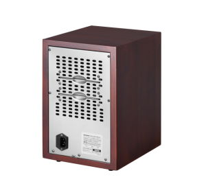 Room Air Purifier with Lonizer and Ozone to Remove Dust and Odors pictures & photos