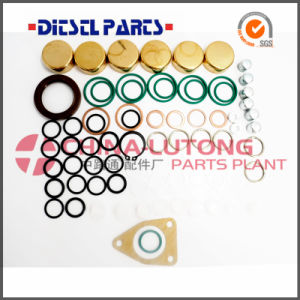 Ve Bosch Injector Pump Seal Kit-Diesel Injector Pump Suppliers pictures & photos