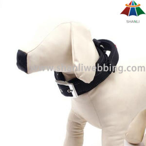 Hot-Sale High-Quality Solid Color 20mm Polyester Dog Collar with Puller & Adjusting Hole pictures & photos