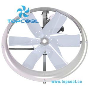 36 Inch Axial Recirculation Fan for Livestock and Industry Use! pictures & photos