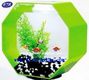 Wholesale Clear Acrylic Wall Hanging Round Fish Tank pictures & photos