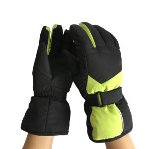 Outdoor Sports Gloves, Fg004