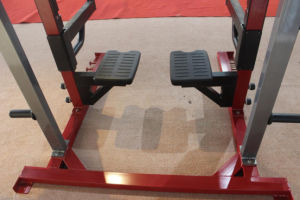 Commercial Gym Equipment/Multipower Rack/HD Elite Rack Gym pictures & photos