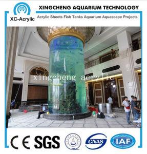 Customized Acrylic Aquarium Cylinder Fish Tank pictures & photos