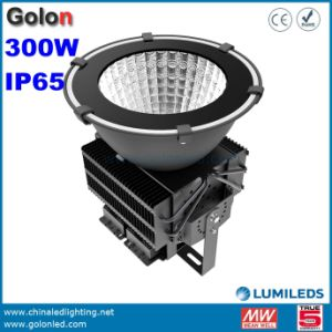 Waterproof LED High Bay Light 300W 500W 400W 200W 150W Meanwell Philips SMD LED Bay pictures & photos