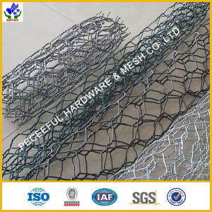 Hot Sale PVC Gabion Box/Gabions (HPZS-1015) pictures & photos