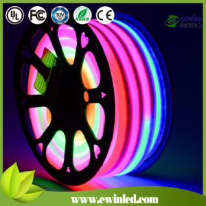 14*26mm 24V Digital Xmas Outdoor LED Neon Rope Light pictures & photos