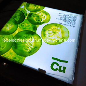 Tension Fabric Light Box with Light Guide Plate pictures & photos