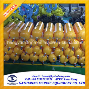 PVC Coating Fabric Water Bags for Load Testing pictures & photos