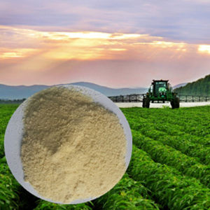 Soybean Hydrolysed Amino Acids Free From Chloridion pictures & photos