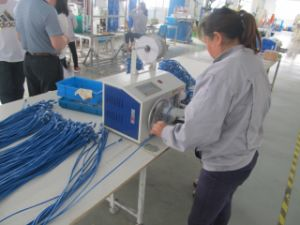Competitive SFTP CAT6A Network Cable pictures & photos