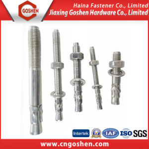 Stainless Steel 304/316 Wedge Bolt Anchor pictures & photos