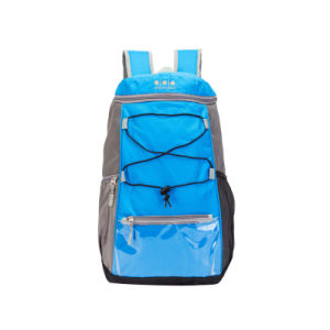 Deluxe Fashion Outdoor Sports Backpacks Sh-8304 pictures & photos