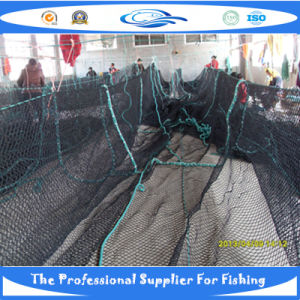 PE Knotless Fish Net (SDC17946) pictures & photos