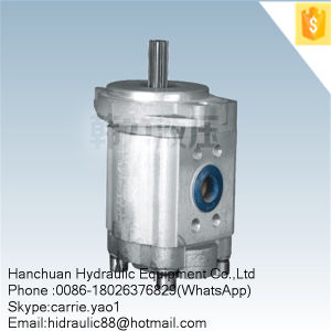 Mini Electric Submersible Hydraulic Fuel Gear Pump (CBT-F430) pictures & photos