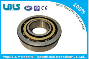 Nu Series Single-Row Cylindrical Roller Bearing (NU220 NU220E NU220EM)