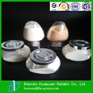 Wholesale Price Good Quality Protein Powder pictures & photos