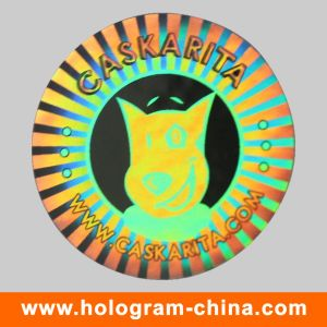 Custom Anti Counterfeiting 3D Silver Laser Holographic Security Label pictures & photos