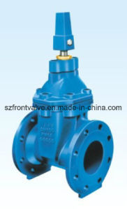 Cast Iron/Ductile Iron Gate Valve with Square Head pictures & photos