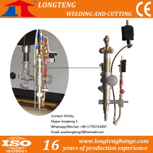 Auto Ignition/Gas Spark Igniter for CNC Machine pictures & photos